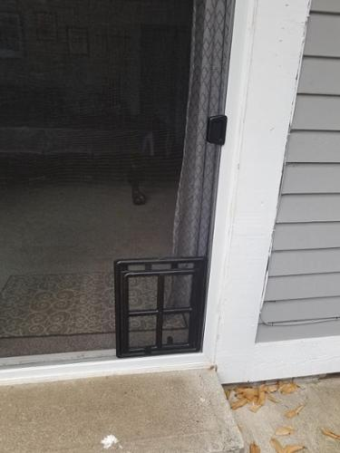 This screen door with the pet door attached, is one of our best sellers! able to accommodate large pets!
